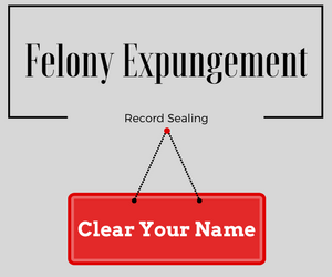 "Picture ""felony expungement and sealing records."""