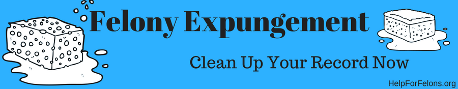 "Image with sponges and the caption ""Felony expungement, Clean up your record now."""