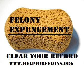 Picture of a infographic about felony expungement.