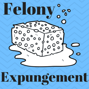 "Image of a ""sponge."" The caption reads ""Felony Expungement."""
