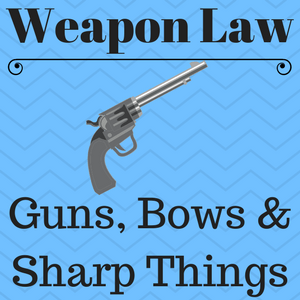 "Image with the caption ""weapon laws for felons, guns, bows and sharp things."""