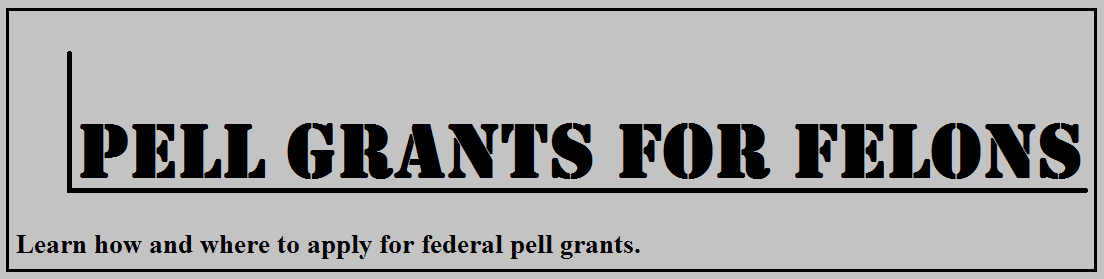 Picture of an infographic about federal pell grants for felons.